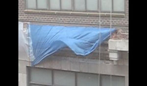 The Blue Tarp